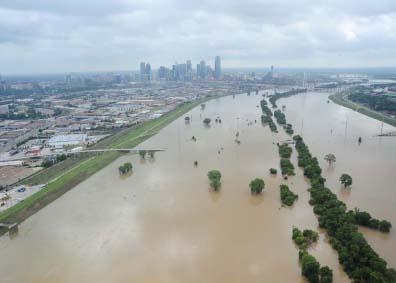 flooded trinity